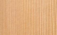 lamellare-larice
